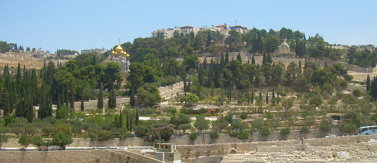 Mount of Olives Tour