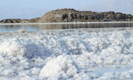 Dead Sea Salt Skin Therapy