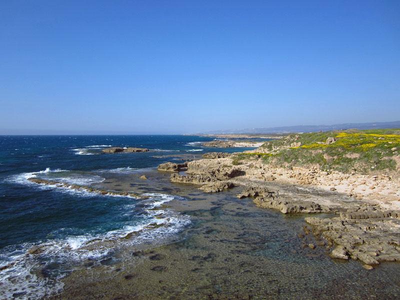 Habonim Beach