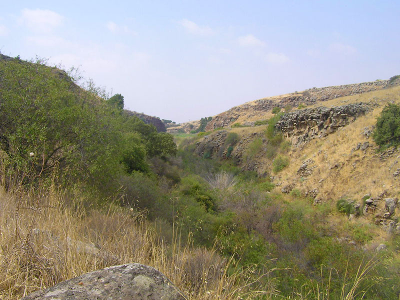 meshushim-pool-path