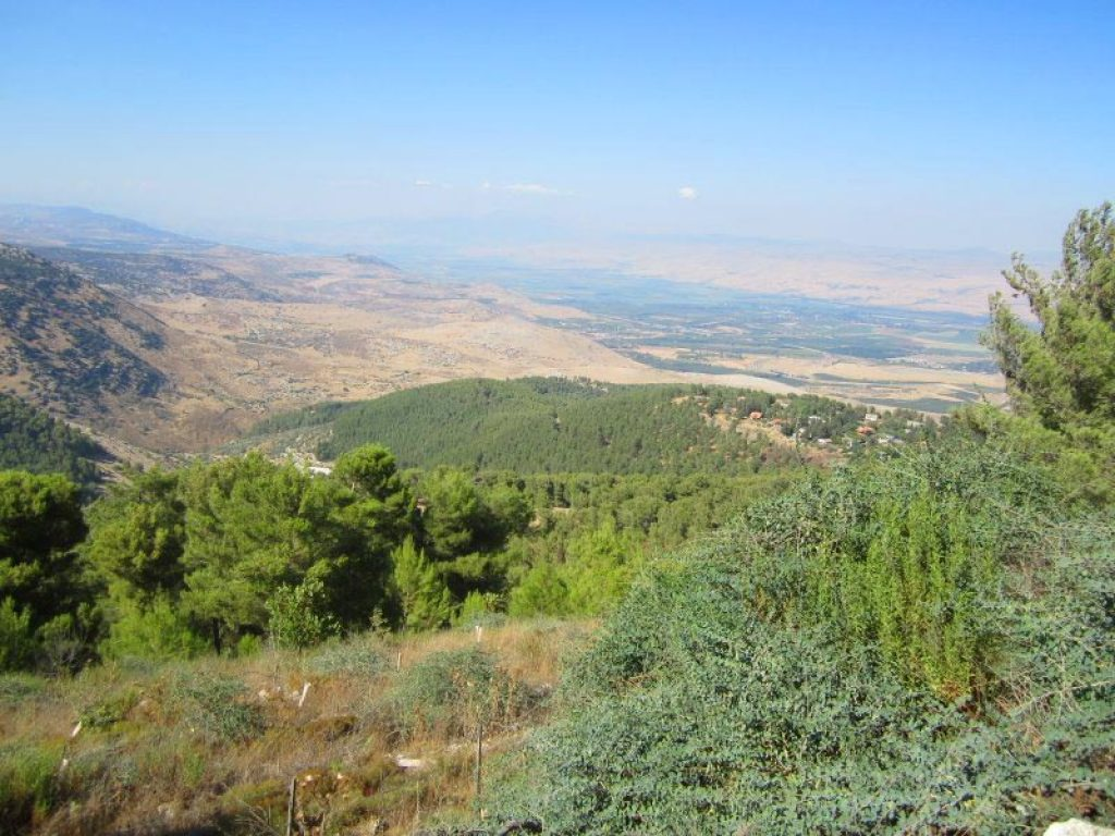 mount carmel jewish personals Mount carmel is the only known place in the world where neanderthals  at  least 80,000 years before jews, christians and muslims settled in the hills of   the earliest artifacts found there dating to at least half a million years.