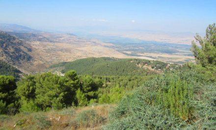 Mount Carmel Israel – An Insider's Guide