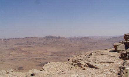 Negev Desert The True Insider's Guide