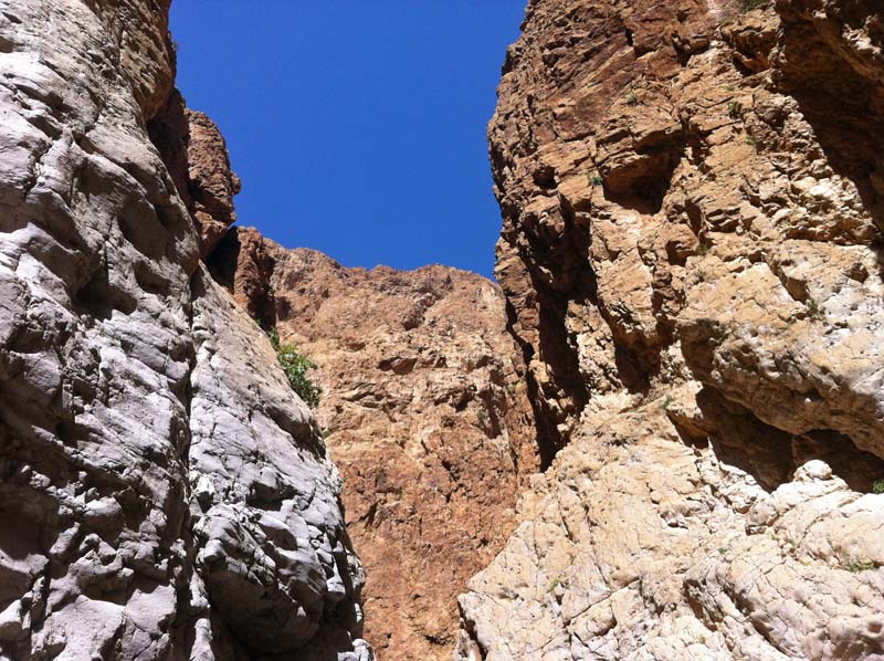 Wadi Dargot - inside the canyon
