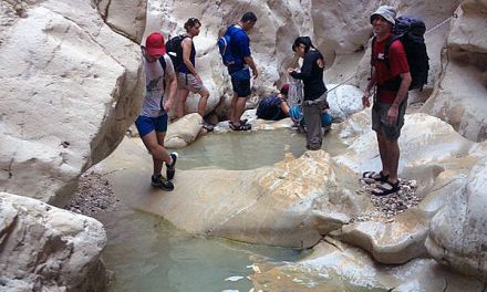 Wadi Dargot - water pools