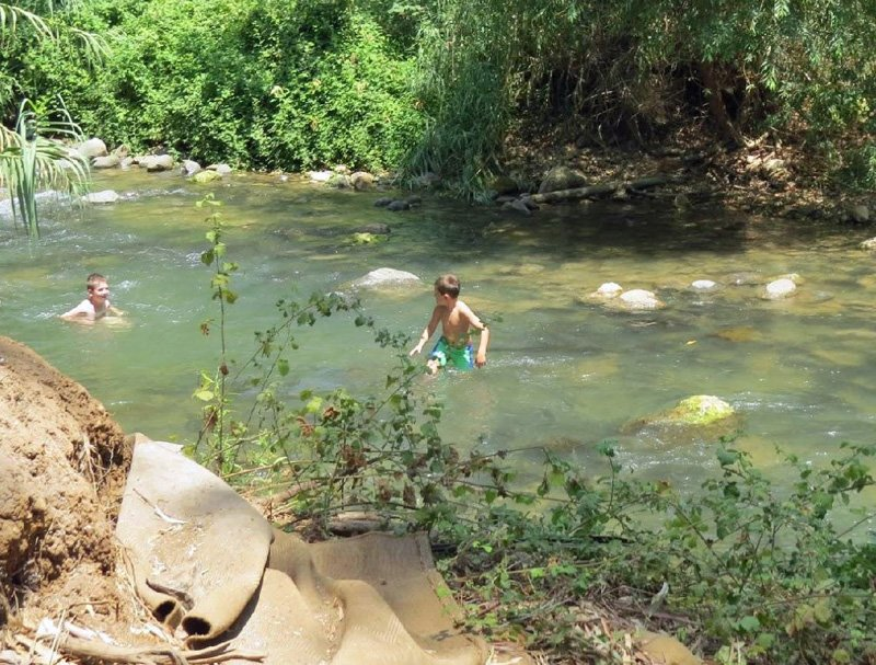 A cool dip in the Nahal Snir