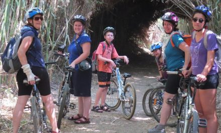 Biking in Israel  From the Deserts to the Mountains