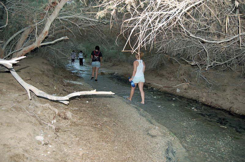 Ein Bokek Trail and Stream