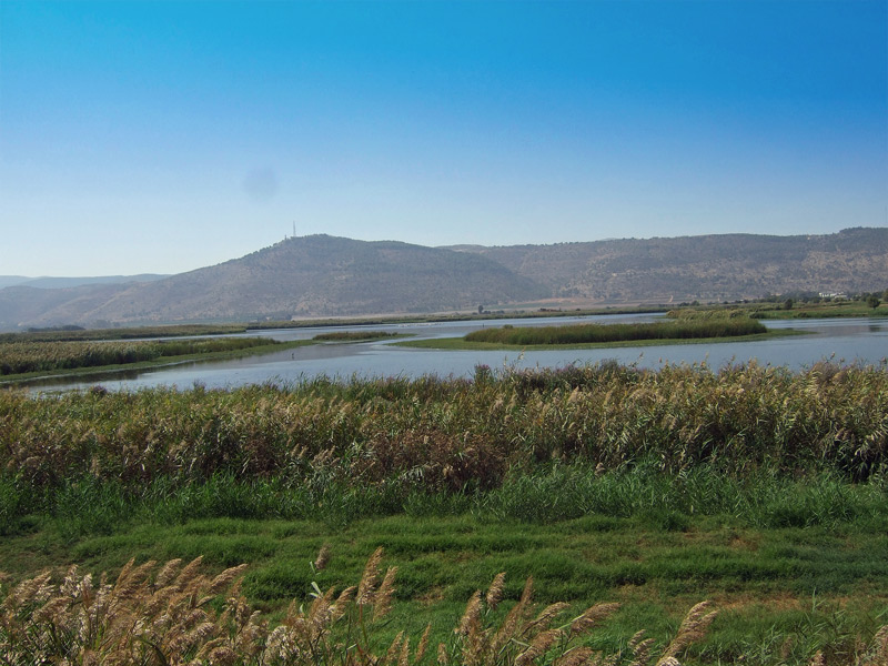 Hula Valley - at the Crossroads between Asia and Africa
