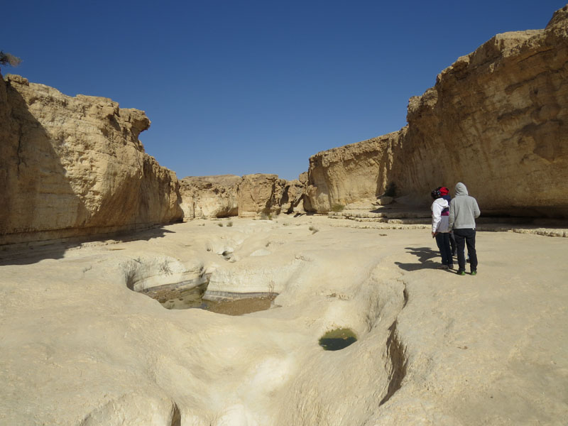 Peres river gorge. The little erosion water holes get filled up after water flowing in the river