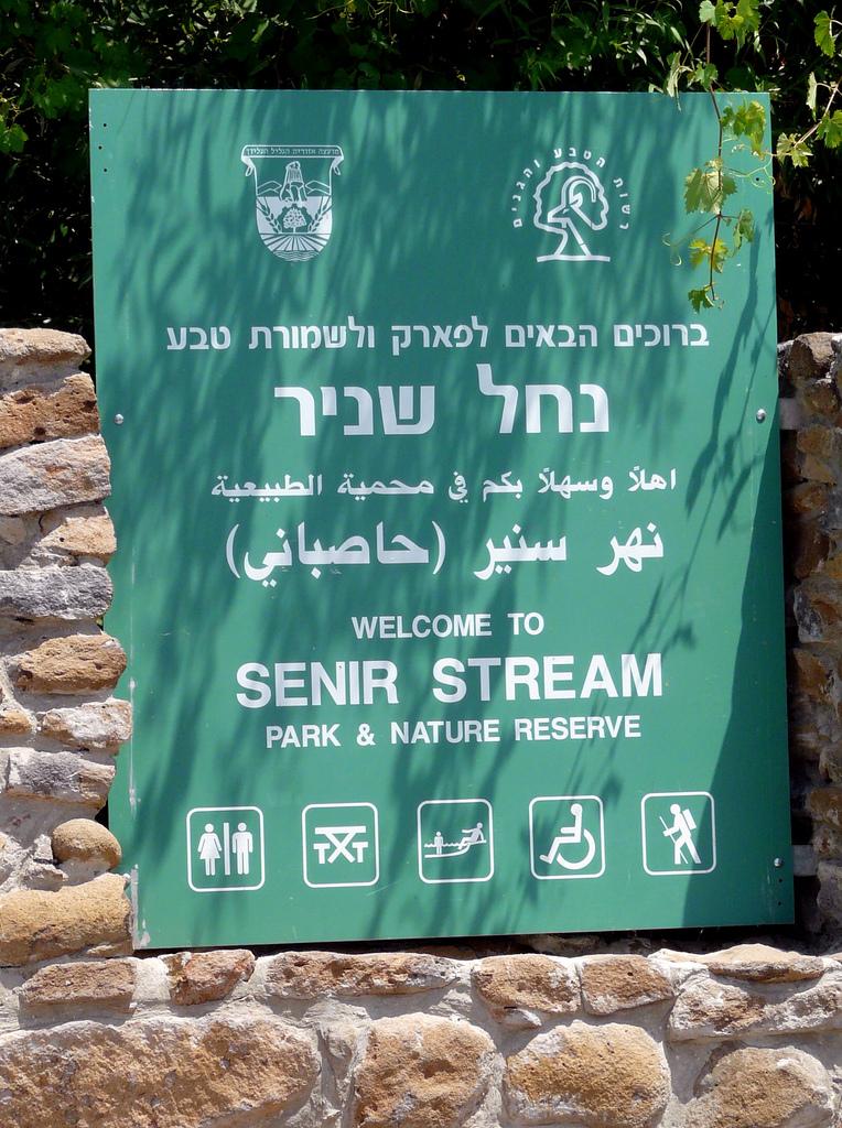 Senir Stream by Bradbox on Flickr