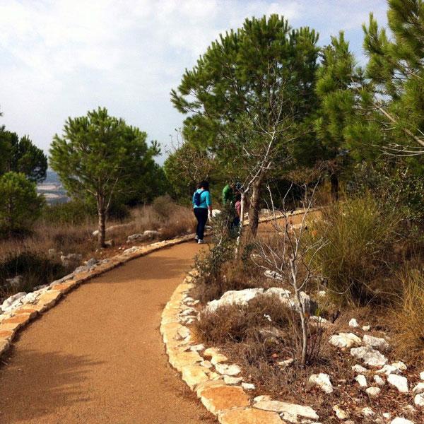 Terrace Path