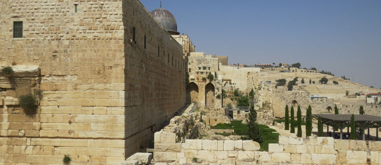 A Personal Guided Tour of the City of David