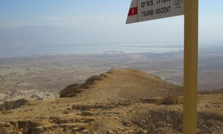 Three Day Negev Jeep Tour